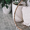 Patio chair and plants