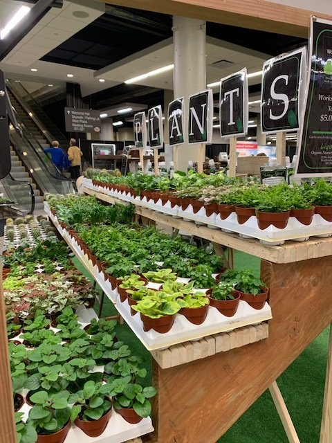 Plants and other trends for the 2021 Show