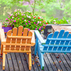 Plants, orange and blue chairs