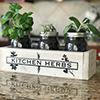 Kitchen-Herbs-Thumbnail