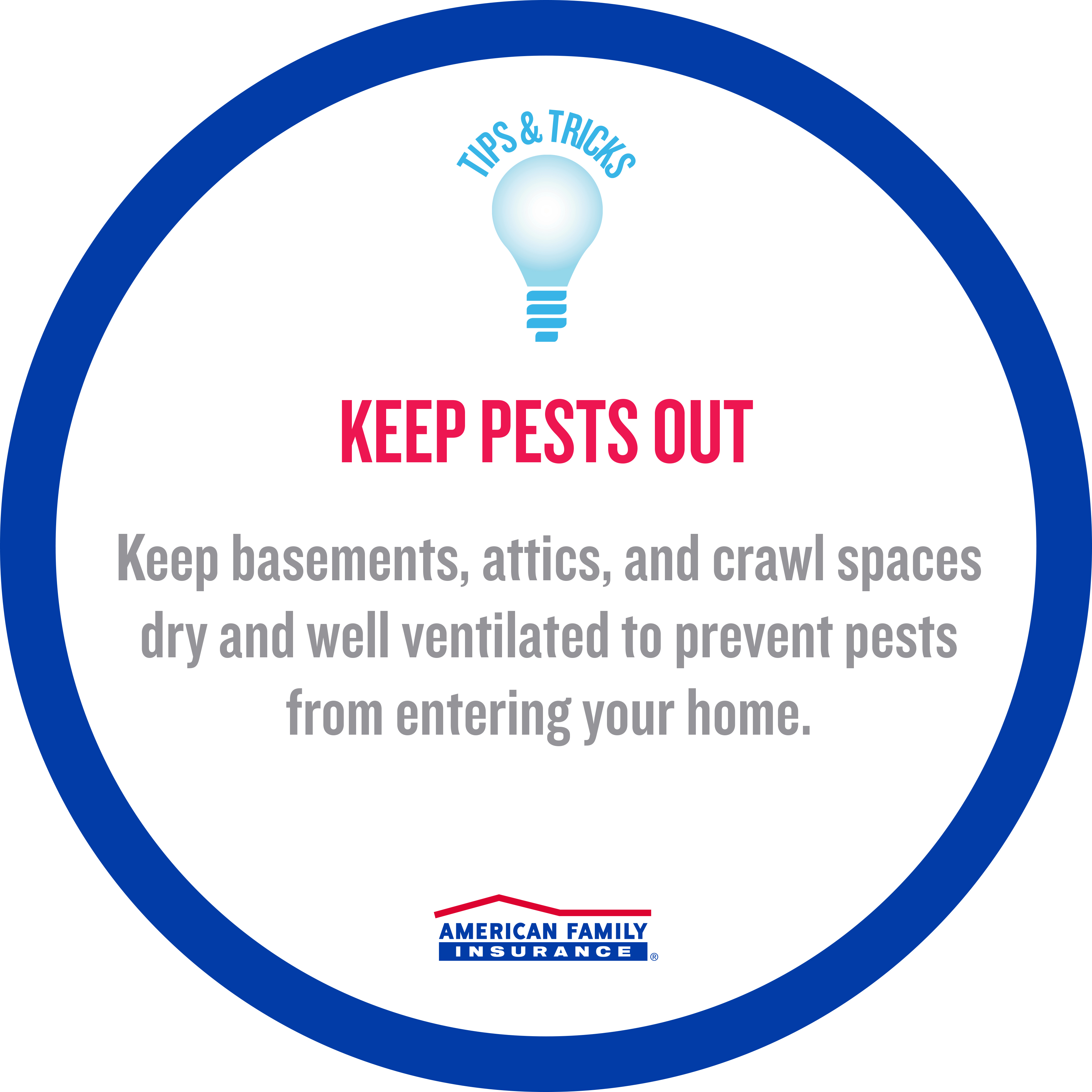 American Family Insurance Tips Trends Keep Pests Out
