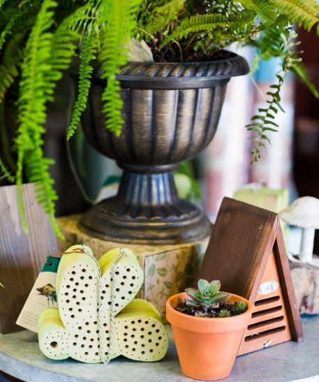Garden items and fern