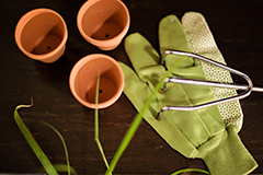 garden pots and tools