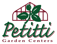 Petitti Logo