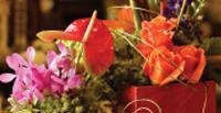 FlowerAuction