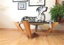 pet-plazadog