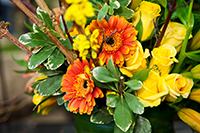 Yellow and orange floral arrangement