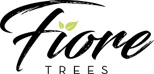 fiore trees logo black with green leaf -resized