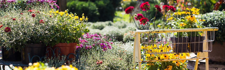 Garden market at the minneapolis home garden show - Home and garden show minneapolis ...