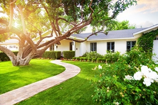 nice-lawn-edges