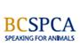 BCSPCA Logo