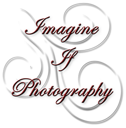 Imagine If Photography logo