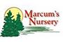 Marcums Nursery