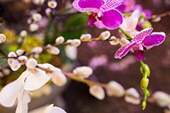 Sogetsu floral arrangement