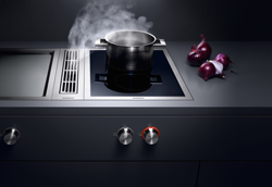 Vario-Gaggenau-Onions-Beauty-Shot_250
