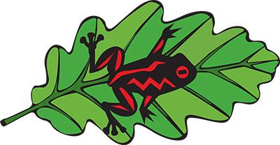 Tree Frog Tree Care logo