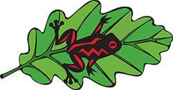 Tree Frog Tree Care