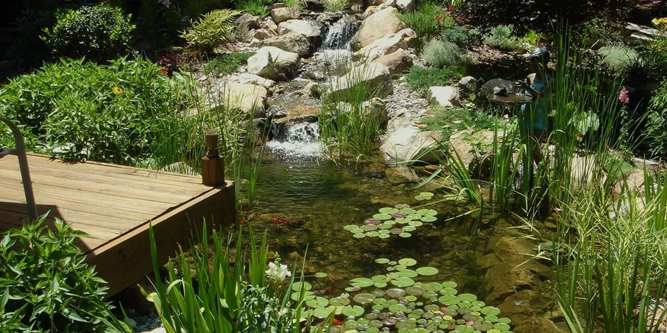 Living-Water-Scapes-2