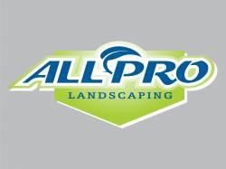 All Pro Logo 250
