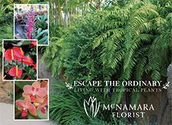 McNamara-Florist-250