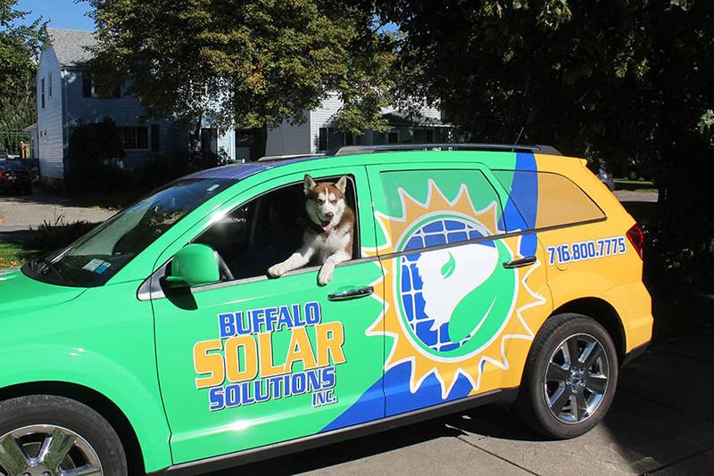 Buffalo Solar Solutions Pup