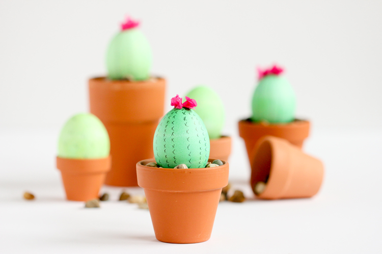 Cactus Egg from Delia Creates