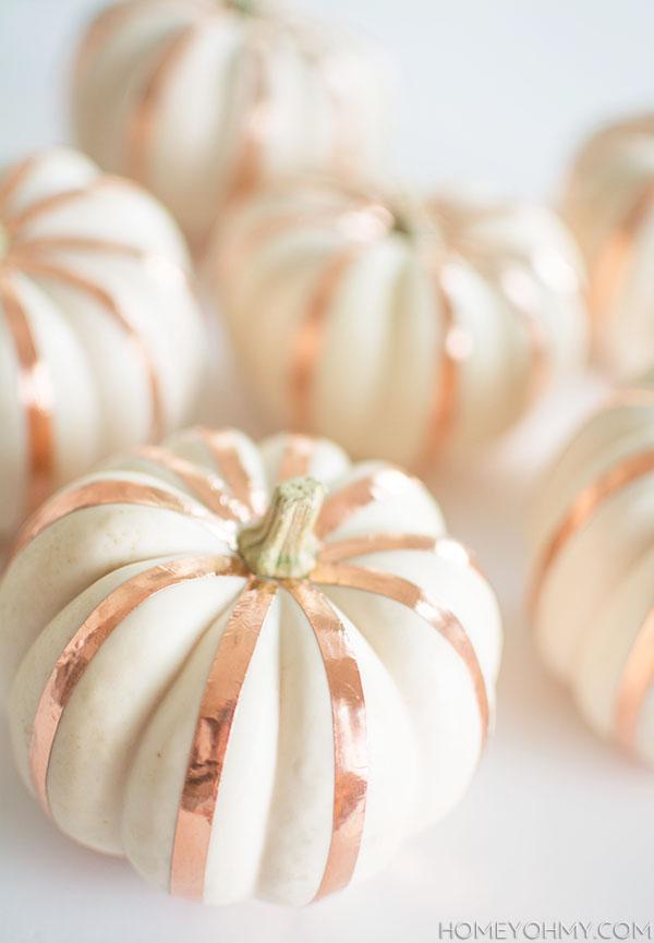 Pumpkins - Honey Oh My