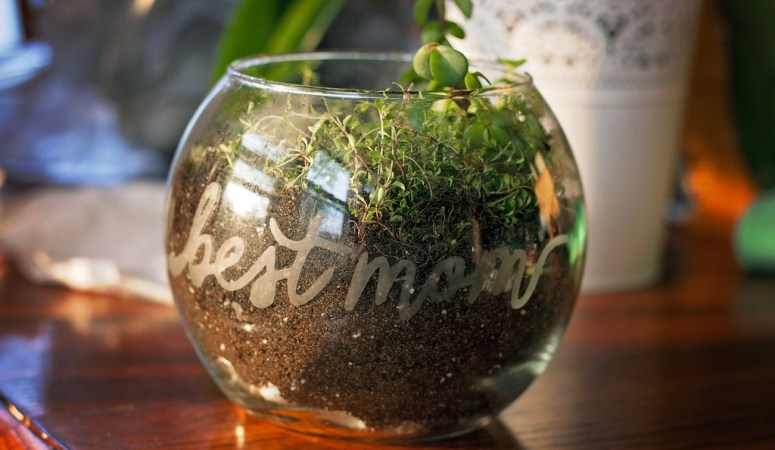 Terrarium from DIY Just Cuz