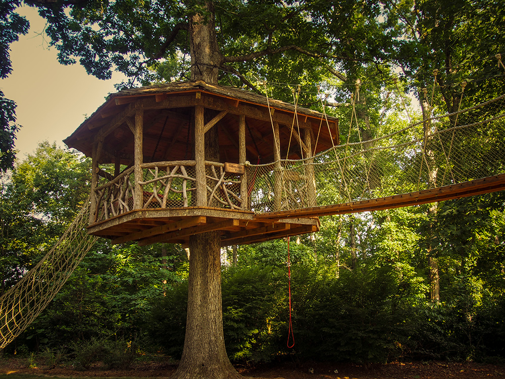 Beanstalk treehouse